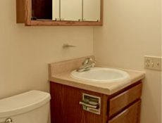 View of the toilet and sink in a full bathroom in a townhome.